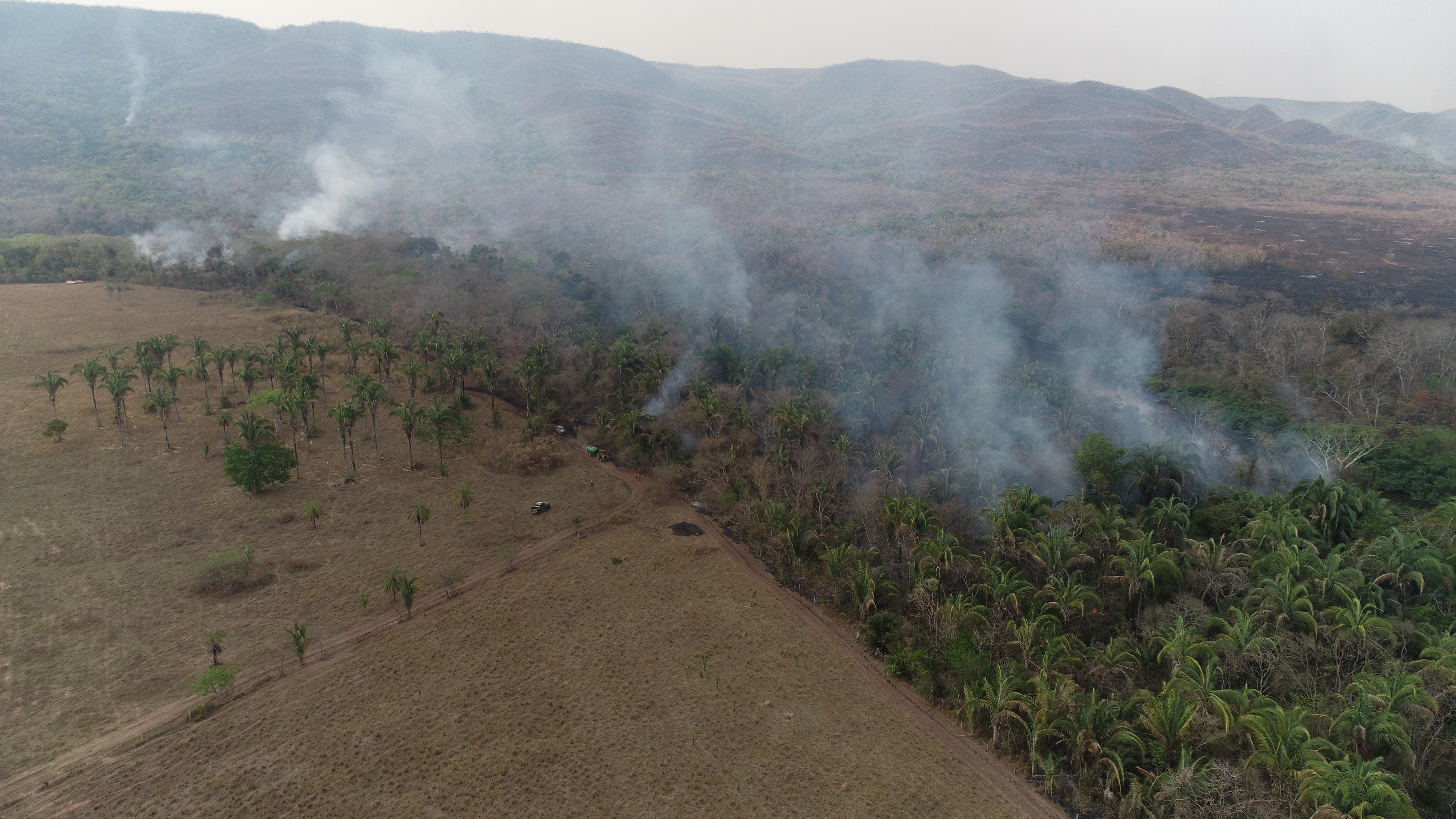 JBS investe em inteligência artificial para controlar incêndios no Pantanal